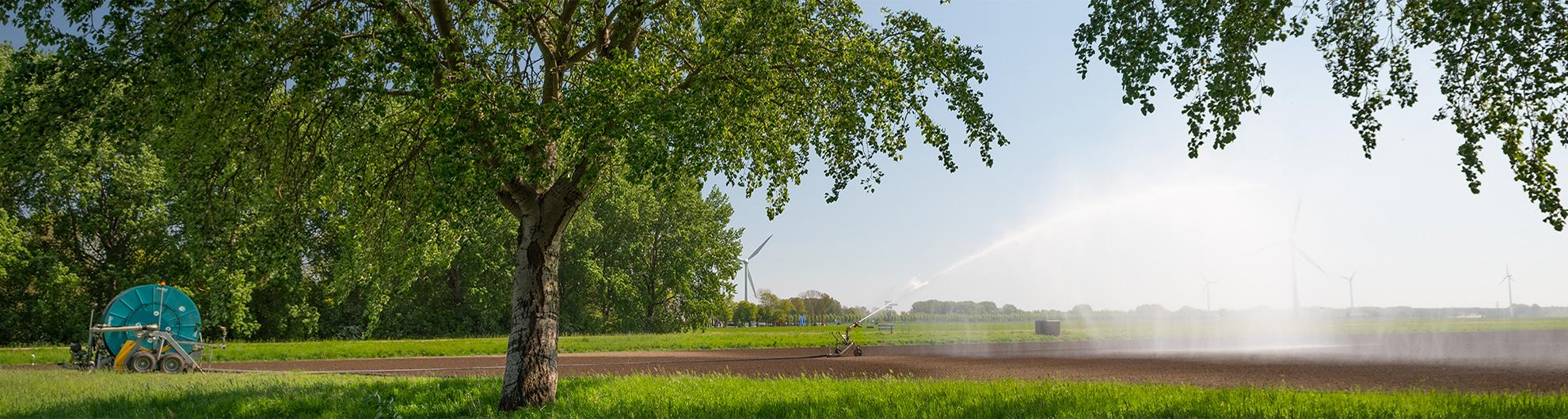 Beregenen in Flevoland