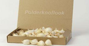 polderknoflook-1kg-695x695.jpg