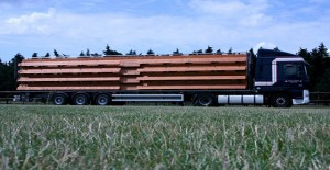 mobieletribune1.jpg